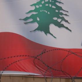 Zeder hinter Stacheldraht in Beirut, Foto: Fabian Schmidmeier